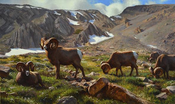 Featured Artist, Kyle Sims (4) Montana Heights shot2 30x50 Oil 2013 $15,400