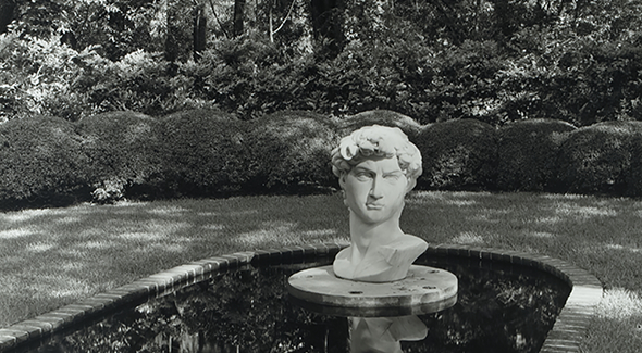 david-in-manicured-garden-copy
